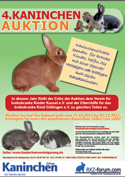 Plakat Kaninchenauktion 2015 Bundeskaninchenschau Kassel